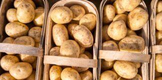 obiad na diecie, obiad dietetyczny, węglowodany, węglowodany na diecie, czy węglowodany są zdrowe, kasza, ryż, makaron, ziemniaki